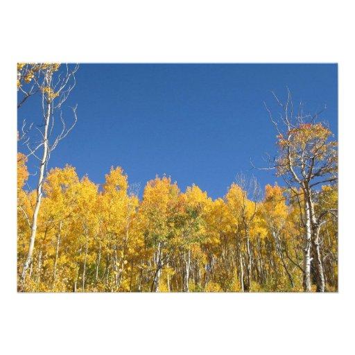 Aspen Trees, Colorado Personalized Invitation