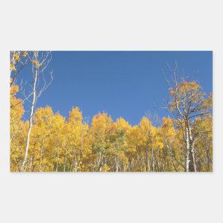 Aspen Trees Colorado Rectangular Sticker