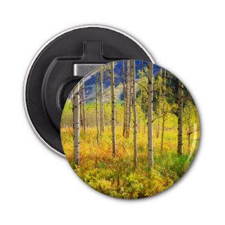Aspen Trees in Autumn in the Rockies