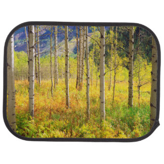 Aspen Trees in Autumn in the Rockies Car Mat