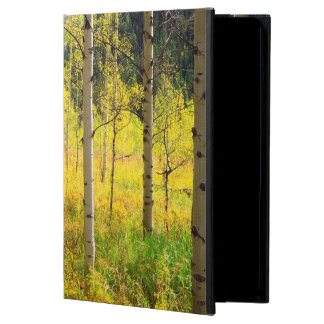 Aspen Trees in Autumn in the Rockies Case For iPad Air