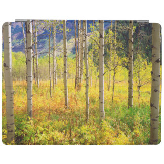 Aspen Trees in Autumn in the Rockies iPad Cover