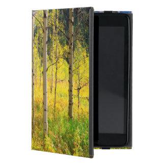 Aspen Trees in Autumn in the Rockies iPad Mini Cover