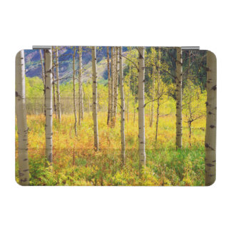 Aspen Trees in Autumn in the Rockies iPad Mini Cover