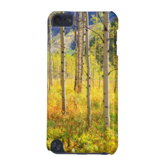 Aspen Trees in Autumn in the Rockies iPod Touch (5th Generation) Cover