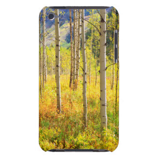 Aspen Trees in Autumn in the Rockies iPod Touch Case-Mate Case