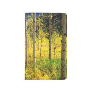 Aspen Trees in Autumn in the Rockies Journal
