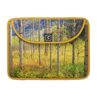 Aspen Trees in Autumn in the Rockies Sleeve For MacBook Pro