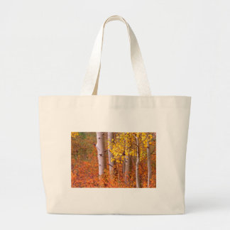 Aspen trees in Autumn Large Tote Bag