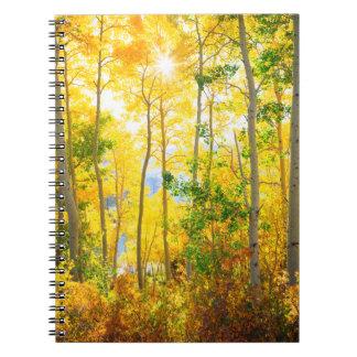 Aspen Trees In Fall | Sierra Nevada Mountains, CA Notebook