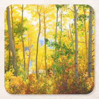 Aspen Trees In Fall | Sierra Nevada Mountains, CA Square Paper Coaster