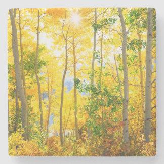 Aspen Trees In Fall | Sierra Nevada Mountains, CA Stone Coaster