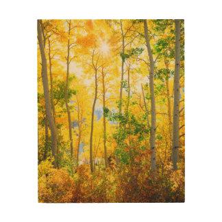 Aspen Trees In Fall   Sierra Nevada Mountains, CA Wood Wall Art