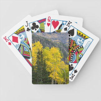 Aspen Trees (Populus Tremuloides) And Conifers 2 Bicycle Playing Cards