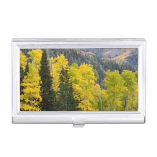 Aspen Trees (Populus Tremuloides) And Conifers 2 Business Card Holder