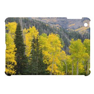 Aspen Trees (Populus Tremuloides) And Conifers 2 iPad Mini Cover