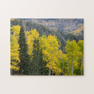 Aspen Trees (Populus Tremuloides) And Conifers 2 Jigsaw Puzzle
