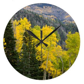 Aspen Trees (Populus Tremuloides) And Conifers 2 Large Clock
