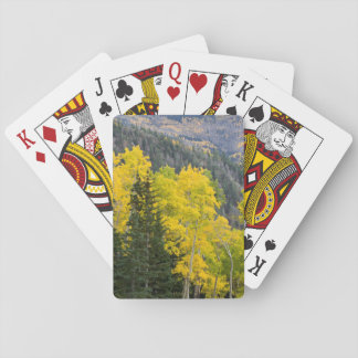Aspen Trees (Populus Tremuloides) And Conifers 2 Playing Cards