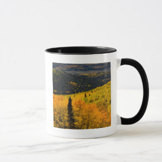 Aspen Trees (Populus Tremuloides) And Conifers Mug