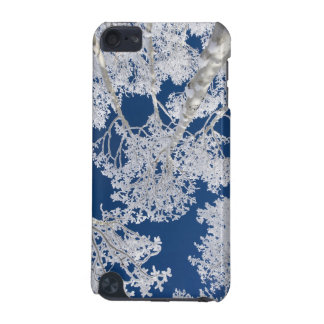 Aspen Trees with Snow iPod Touch (5th Generation) Covers