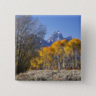 Aspen trees with the Teton mountain range 3 15 Cm Square Badge