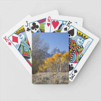 Aspen trees with the Teton mountain range 3 Bicycle Playing Cards
