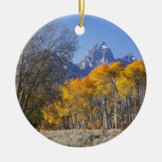 Aspen trees with the Teton mountain range 3 Christmas Ornament