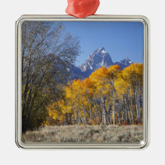 Aspen trees with the Teton mountain range 3 Christmas Ornament