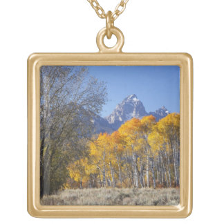 Aspen trees with the Teton mountain range 3 Gold Plated Necklace