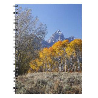 Aspen trees with the Teton mountain range 3 Spiral Notebook