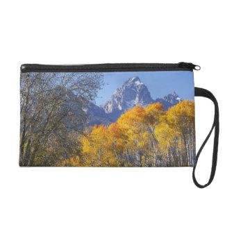 Aspen trees with the Teton mountain range 3 Wristlet