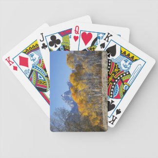 Aspen trees with the Teton mountain range 4 Bicycle Playing Cards