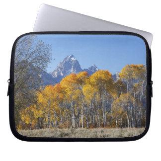 Aspen trees with the Teton mountain range 4 Laptop Sleeve