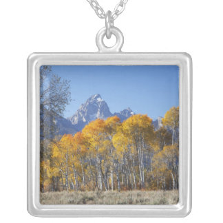Aspen trees with the Teton mountain range 4 Silver Plated Necklace