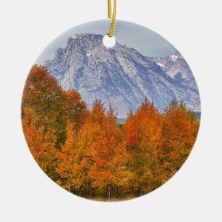 Aspen trees with the Teton mountain range 5 Christmas Ornament