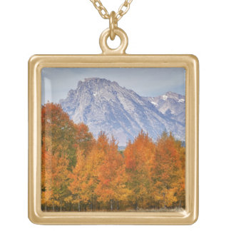 Aspen trees with the Teton mountain range 5 Gold Plated Necklace