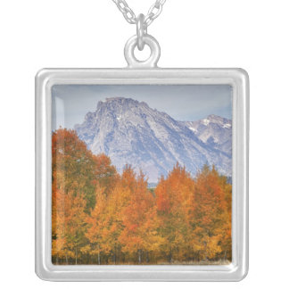 Aspen trees with the Teton mountain range 5 Silver Plated Necklace