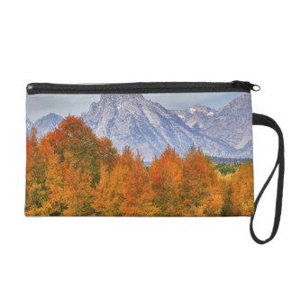Aspen trees with the Teton mountain range 5 Wristlet