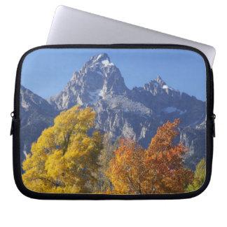 Aspen trees with the Teton mountain range 6 Laptop Sleeve