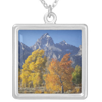 Aspen trees with the Teton mountain range 6 Silver Plated Necklace
