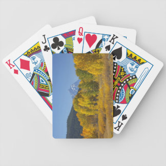 Aspen trees with the Teton mountain range 7 Bicycle Playing Cards