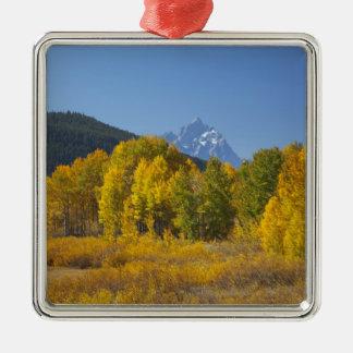 Aspen trees with the Teton mountain range 7 Christmas Ornament
