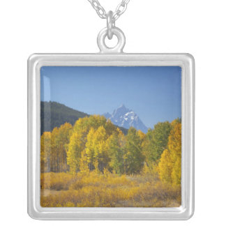 Aspen trees with the Teton mountain range 7 Silver Plated Necklace