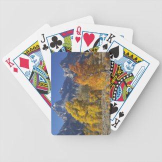 Aspen trees with the Teton mountain range Bicycle Playing Cards