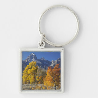 Aspen trees with the Teton mountain range Key Ring