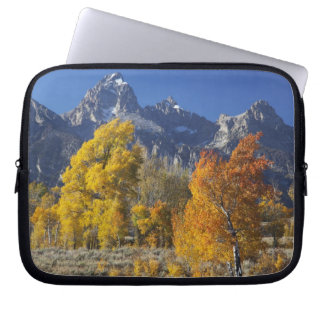 Aspen trees with the Teton mountain range Laptop Sleeve