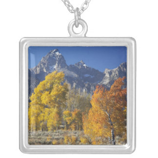 Aspen trees with the Teton mountain range Silver Plated Necklace