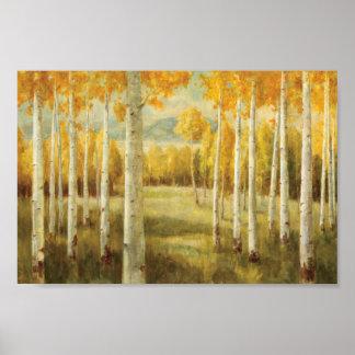 Aspens in Autumn Poster