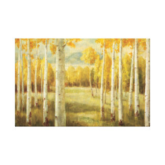 Aspens in Autumn Stretched Canvas Prints